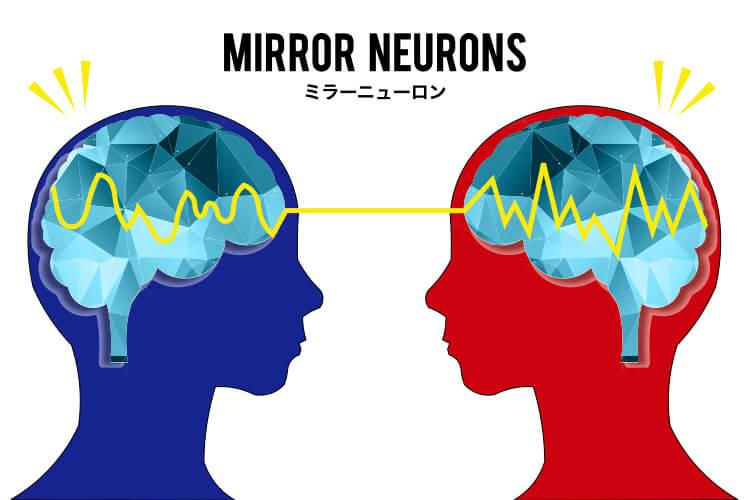 ミラーニューロン